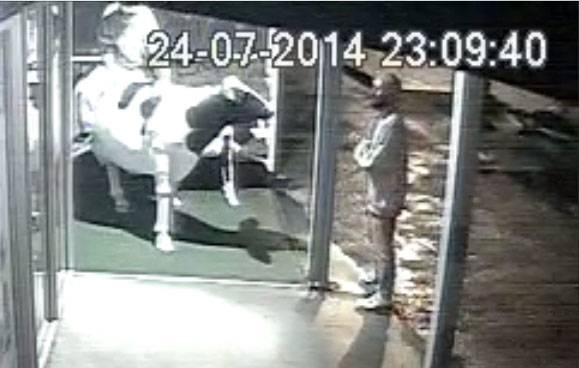 Of interest: CCTV footage shows a person sitting on the cow at the pharmacy as a bearded man takes a photo with his phone.